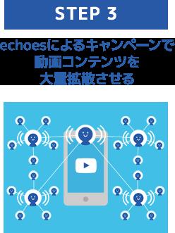 step3 echoesによるキャンペーンで動画コンテンツを大量拡散させる